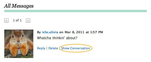 Screenshot of Show Conversation link